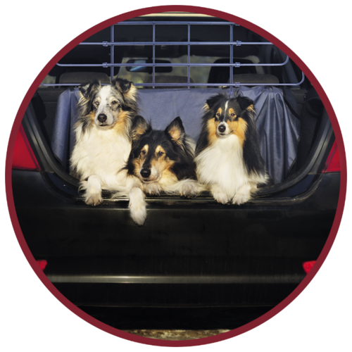 Барьер защитный автомобильный для собак 70-110х82/42-100см металл