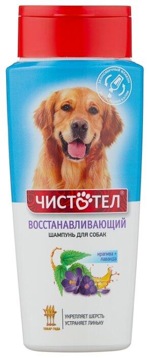 Шампунь ЧИСТОТЕЛ восстанавливающий для собак 270 мл