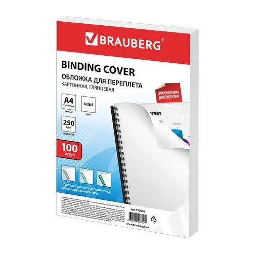 Фото - Обложка BRAUBERG двухсторонняя для переплета 530955/530954/530840 белый 100 шт. brauberg 236735 белый