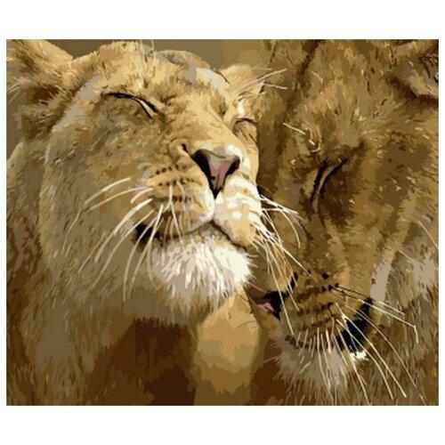 Фото - Картина по номерам Львиная семья, 30х40 см цветной картина по номерам белый тигр 30х40 см me1072