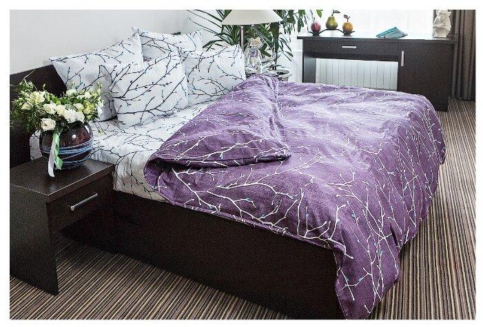 Постельное белье Ночь Нежна Верба (2-спальное, наволочки 70х70 см, поплин)