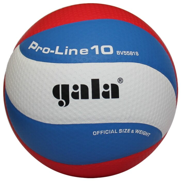 Волейбольный мяч Gala Pro-Line 10