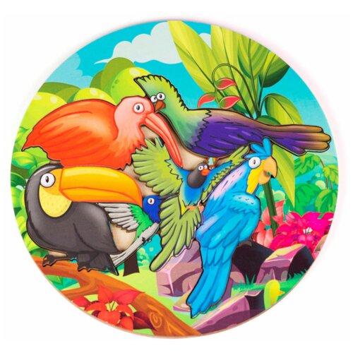 Рамка-вкладыш PAREMO Птицы (PE720-06), 6 дет. зеленый/голубой