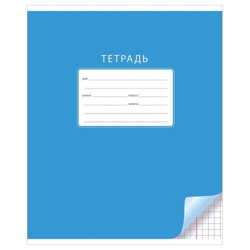 Купить ArtSpace Упаковка тетрадей Однотонная. С уголком Т12к_17919 20 шт., клетка, 12 л., Тетради