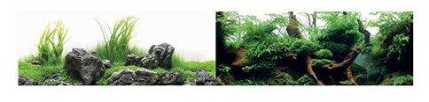 Пленочный фон BARBUS Зеленый рай/Воды Амазонки двухсторонний