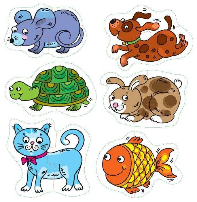 Животное в рисунках и картинках детские