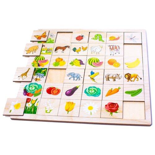 Фото - Настольная игра Мастер игрушек Ассоциации: Природа настольная игра мастер игрушек мемори
