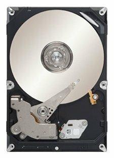 Жесткий диск Seagate ST3500312CS