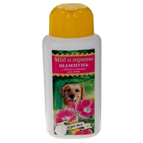 Шампунь Пчелодар с мёдом и геранью для собак 250мл шампунь для животных пчелодар 63290