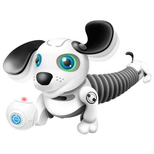 Робот Silverlit YCOO n'Friends Собака Дэкел Джуниор белый/серый интерактивная игрушка робот silverlit ycoo n friends собака руффи синий