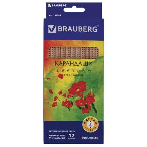 Купить BRAUBERG Карандаши цветные Цветы 12 цветов (181288), Цветные карандаши