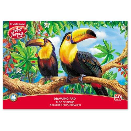 Купить Альбом ErichKrause ArtBerry Экзотические птицы 29.7 х 21 см (A4), 120 г/м², 40 л., Альбомы для рисования
