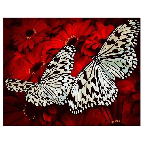 Фото - ВанГогВоМне Картина по номерам Белые бабочки, 40х50 см (ZX 21556) вангогвомне картина по номерам любовь к кофе 40х50 см zx 22277