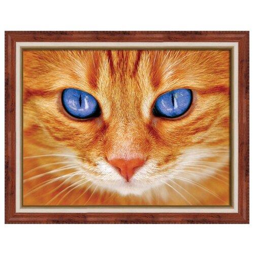 Алмазная живопись Набор алмазной вышивки Синеглазый кот (АЖ-1716) 40х30 см