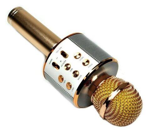 Купить Микрофон беспроводной караоке Bluetooth Hifi WS 858 (Золотой) по низкой цене с доставкой из Яндекс.Маркета (бывший Беру) - Самая желанная техника