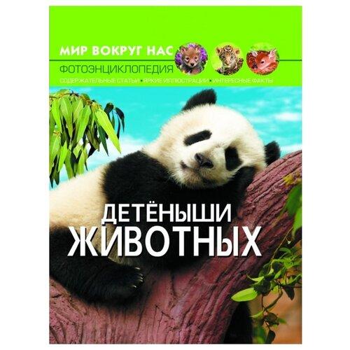 Фото - Мир вокруг нас. Фотоэнциклопедия. Детеныши животных мир вокруг нас фотоэнциклопедия детеныши животных