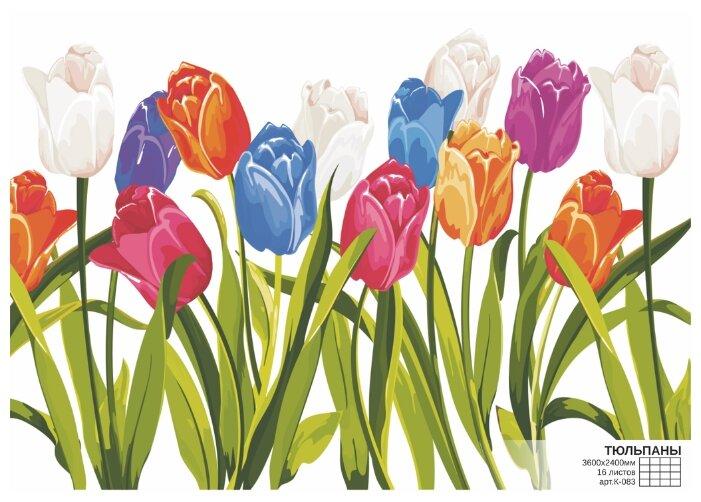 Фотообои бумажные Симфония Тюльпаны К-083 3.6х2.4м