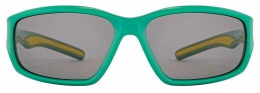 Солнцезащитные очки FLAMINGO 15603 C01