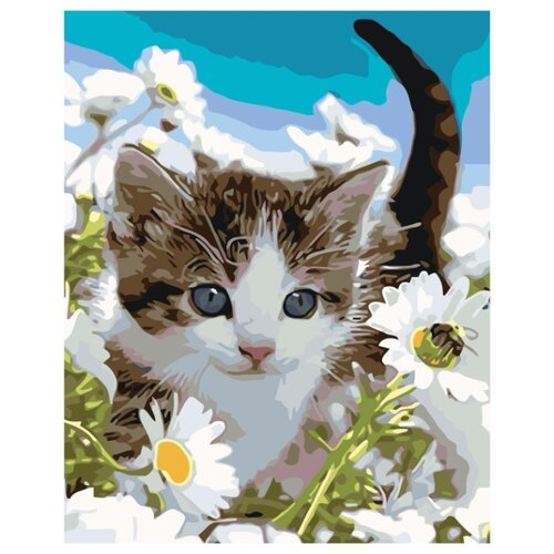 Прогулка котенка Раскраска по номерам на холсте Живопись по номерам