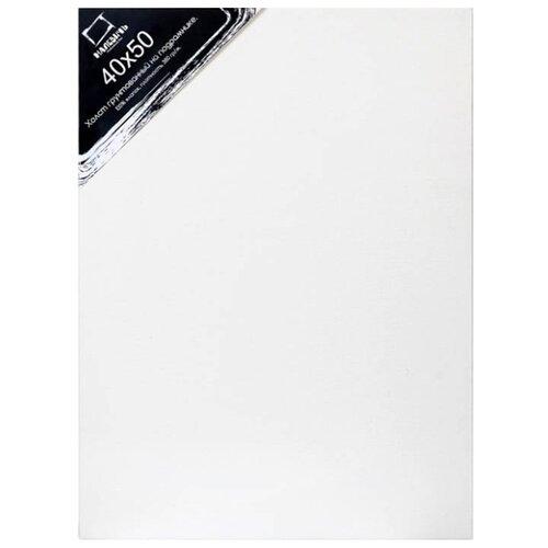 Холст Малевичъ на подрамнике 40x50 см (214050) малевичъ пенал скрутка для кистей на короткой и средней ручке оливковый