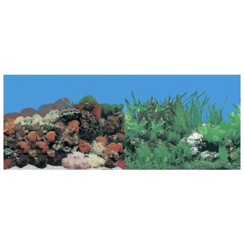 Пленочный фон Prime Кораллы/Растительный двухсторонний 60х150 см