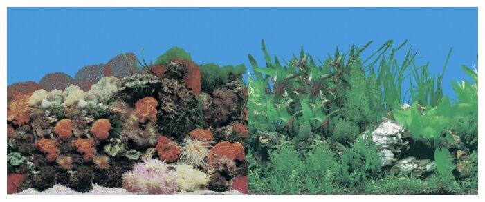 Пленочный фон Prime Кораллы/Растительный двухсторонний