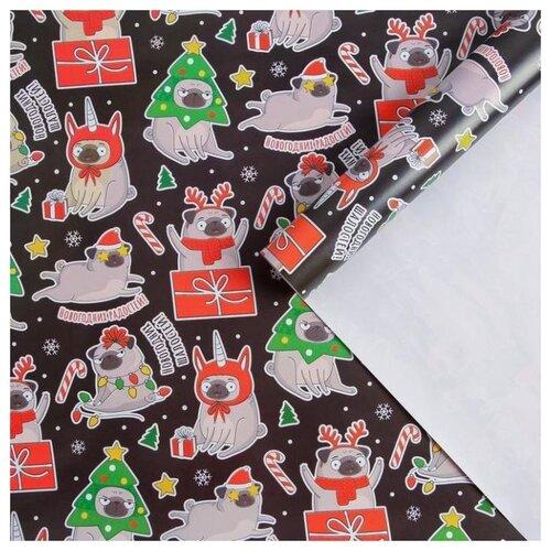 Бумага упаковочная глянцевая «Мопсы», 70 × 100 см бумага упаковочная 70 100 первые слова мел инд уп
