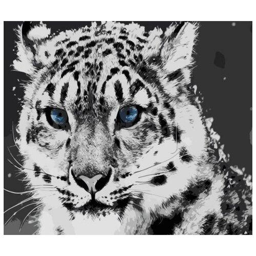 Фото - Картина по номерам Голубоглазый барс, 30х40 см цветной картина по номерам белый тигр 30х40 см me1072