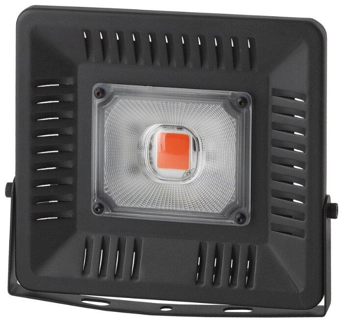 ЭРА Прожектор для растений FITO-50W-LED
