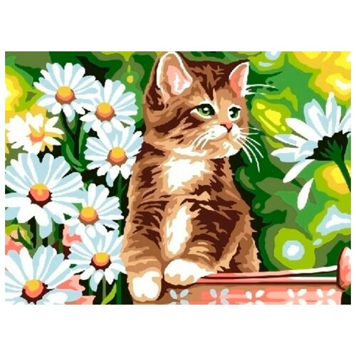 Купить Картина по номерам Paintboy Котик в ромашках , 30x40 см, Картины по номерам и контурам