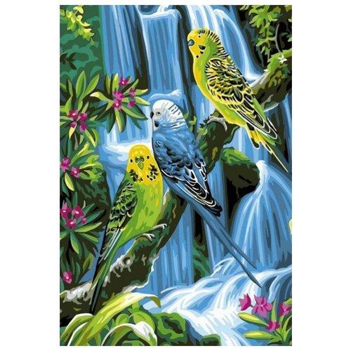 Фото - Картина по номерам Волнистые попугаи, 30х40 см цветной картина по номерам белый тигр 30х40 см me1072