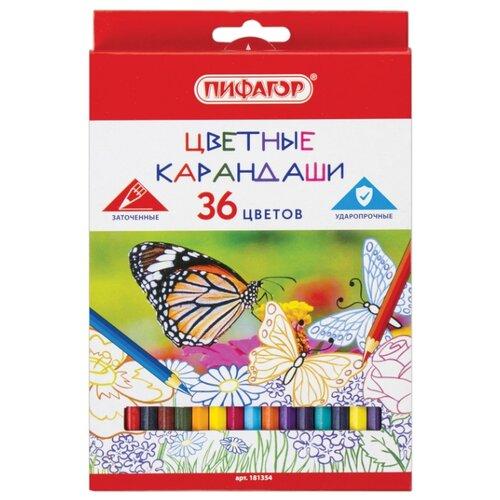 Пифагор Карандаши цветные Бабочки, 36 цветов (181354) восковые карандаши пифагор 12 цветов 222962
