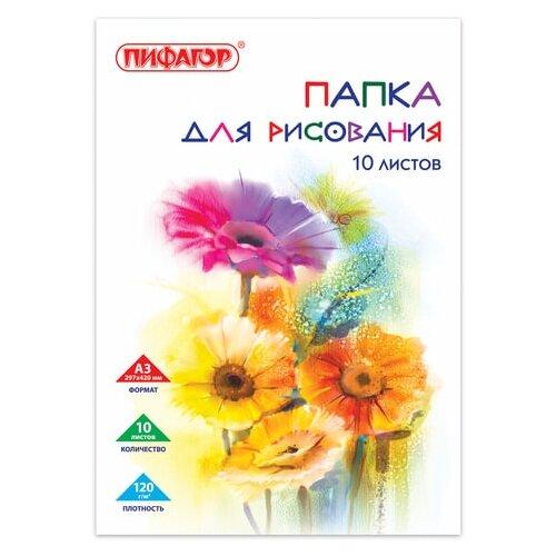 Фото - Папка для рисования Пифагор Цветы 42 х 29.7 см (A3), 120 г/м², 10 л. папка для рисования bruno visconti 42 х 29 7 см a3 160 г м² 20 л