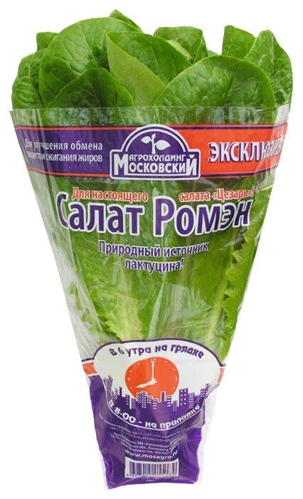 Агрохолдинг Московский Салат Ромэн в горшочке, пакет полиэтиленовый (Россия)