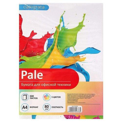Бумага Calligrata A4 Pale 80 г/м² 500 лист. пастель
