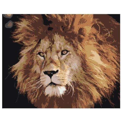 Купить Брутальный лев Раскраска картина по номерам на холсте Z-AB368 40х50, Живопись по номерам, Картины по номерам и контурам