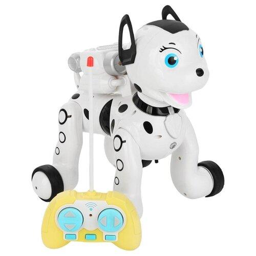 Фото - Робот Zhorya Умный питомец Далматинец ZYB-B2997-4 белый радиоуправляемый робот zhorya интерактивный белый кот 2059