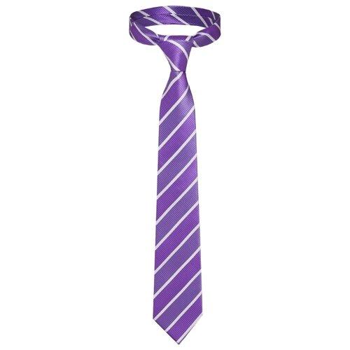 Галстук Signature Мистер Блисс (209462) фиолетовый/белый