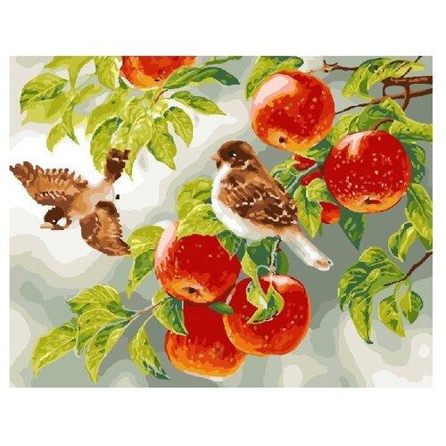 Фото - ВанГогВоМне Картина по номерам Птички на яблоне, 40х50 см (ZX 22191) вангогвомне картина по номерам любовь к кофе 40х50 см zx 22277