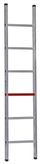 Лестница приставная 1-секционная CAGSAN T6020