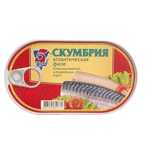 Фото - 5 Морей Скумбрия атлантическая филе бланшированная в томатном соусе, 175 г скумбрия холодного копчения vici атлантическая крупная 300 г