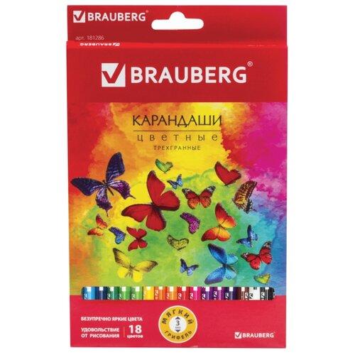 Купить BRAUBERG Карандаши цветные Бабочки 18 цветов (181286), Цветные карандаши