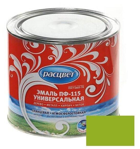 Эмаль пф-115 расцвет 0,9кг салатовый