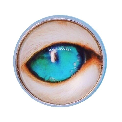 OTOKODESIGN Значок Зеленый глаз 51654 значок зеленый футбол
