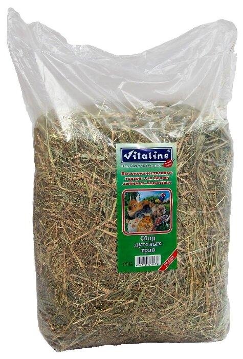 Сено Vitaline Сбор луговых трав 3 кг