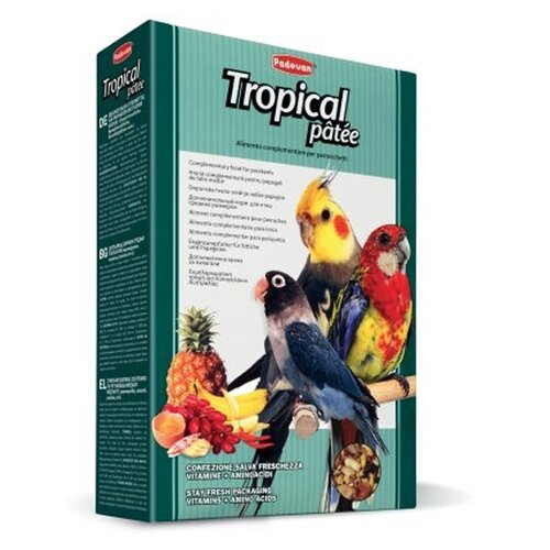 Padovan корм Tropical Patee с фруктами для средних попугаев 700 г