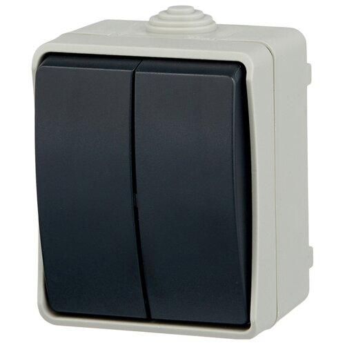Выключатель 2х1-полюсный IEKEVS20-K03-10-54-DC ФОРС, 10 А, серый