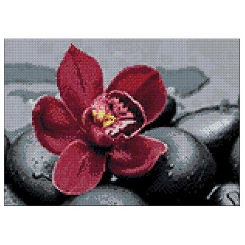Гранни Набор алмазной вышивки Королевская орхидея (Ag 4675) 38х27 смАлмазная вышивка<br>