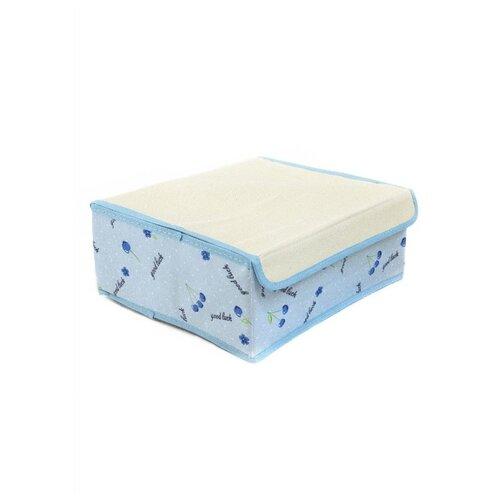 Фото - Удачная покупка Коробка для хранения RYP103 голубой/белый коробка рыжий кот 33х20х13см 8 5л д хранения обуви пластик с крышкой