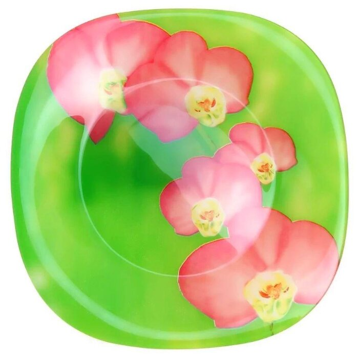 Luminarc Тарелка суповая Erine 21х21 см зеленый/розовый